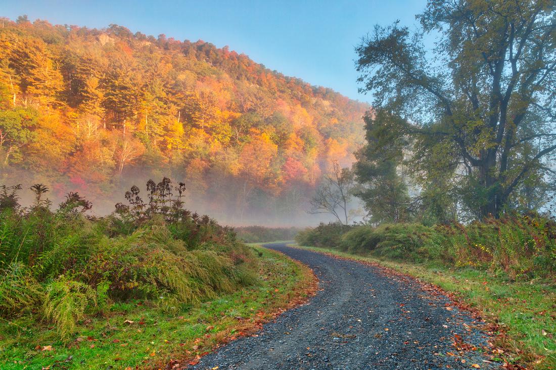 Misty Autumn McDade Trail