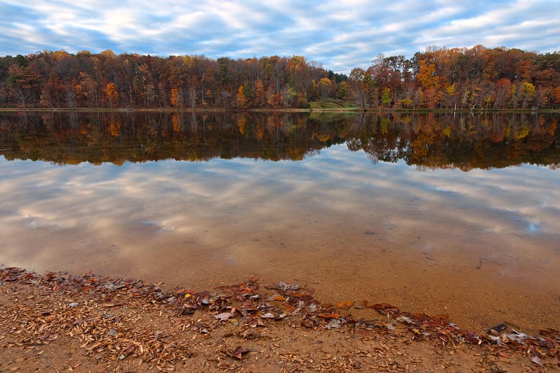 Seneca Fall Reflections