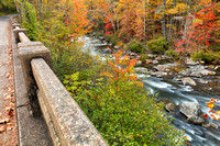 Autumn Bridge Overlook - Bald River