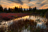 Autumn Dolly Sods Sunset