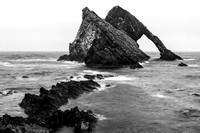 Black Bow Fiddle Rock