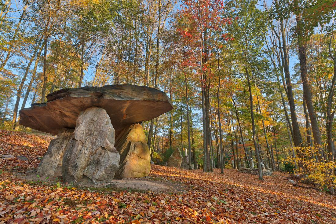 Autumn Dolmen Forest