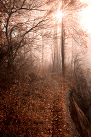 Misty Sun Kissed Trail - Sepia Nostalgia