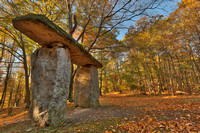 Autumn Megalith Forest