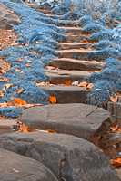 Sapphire Stepping Stones