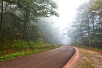 Misty Forest Road - Spruce Knob