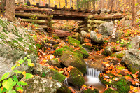 Autumn Logging Railroad Stream
